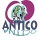 Женска граѓанска иницијатива АНТИКО